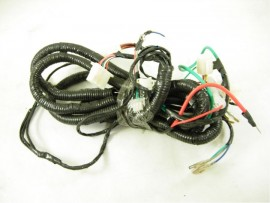 21 Wire harness for buggy...