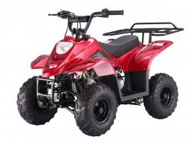 ATV TAOTAO 110cc BOULDER++...
