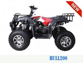 ATV TAO MOTORS THE BULL...
