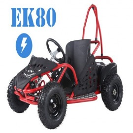 Electric buggy 48v 800w...