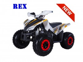 ATV TAO MOTORS THE REX...