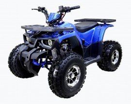 ATV TAO MOTORS THE RAPTOR 125cc AUTOMATIC