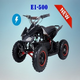 VTT TAOTAO E-1 500w ELECTRIC