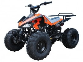 ATV TAOTAO 125G CHEETAH...