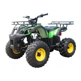 ATV TAOTAO T-FORCE AUTOMATIC