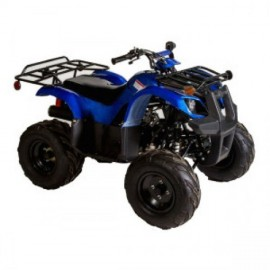 ATV TAOTAO 125D Destructor...