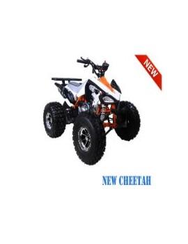 ATV PARTS FOR TAOTAO AND APOLLO -ATV LACHUTE