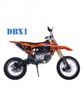 TAOTAO DBX1