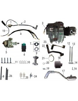 SYSTEM ELECTRIC AND ENGINE FOR TAOTAO DB 27